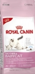 Корм для котят Royal Canin (от 1 до 4 месяцев) ФХН Мазер энд Бэбикет  2 кг ― Aquatic World