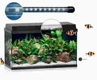 Аквариум Juwel PRIMO 60 черный 61х31х37см LED ― Aquatic World